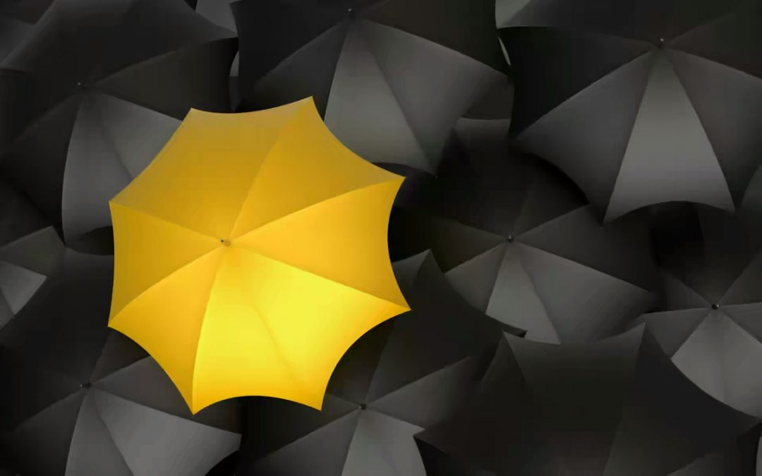 توحيد مظلة الخير
